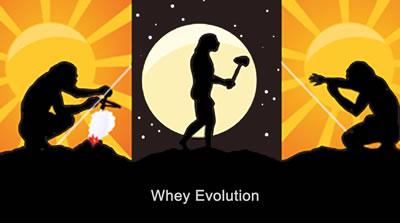 Whey Proteinpulver utveckling