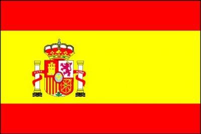 large-spain-flag.jpg