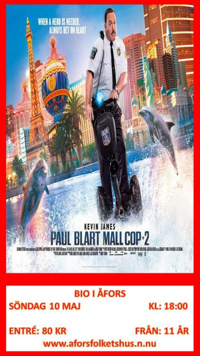 /mall-cop-2.jpg