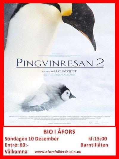 /pingvinresan-2.jpg