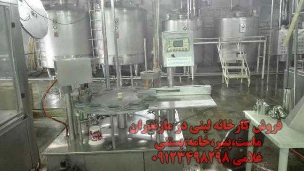 فروش کارخانه لبنی در مازندران - ماست،پنیر،خامه،بستنی