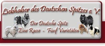 bannerbereich1.jpg