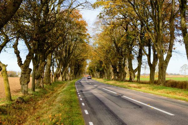 asfaltsväg genom Sverige