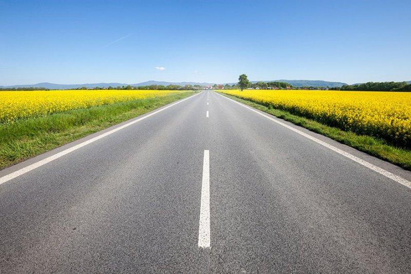 Vacker sommarväg i Sverige