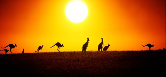 /om-australien.jpg