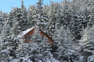 Hustak med stora moderna fönster sticker upp bland snötäckta trädtoppar.