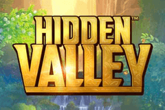 Hidden Valley slot promo