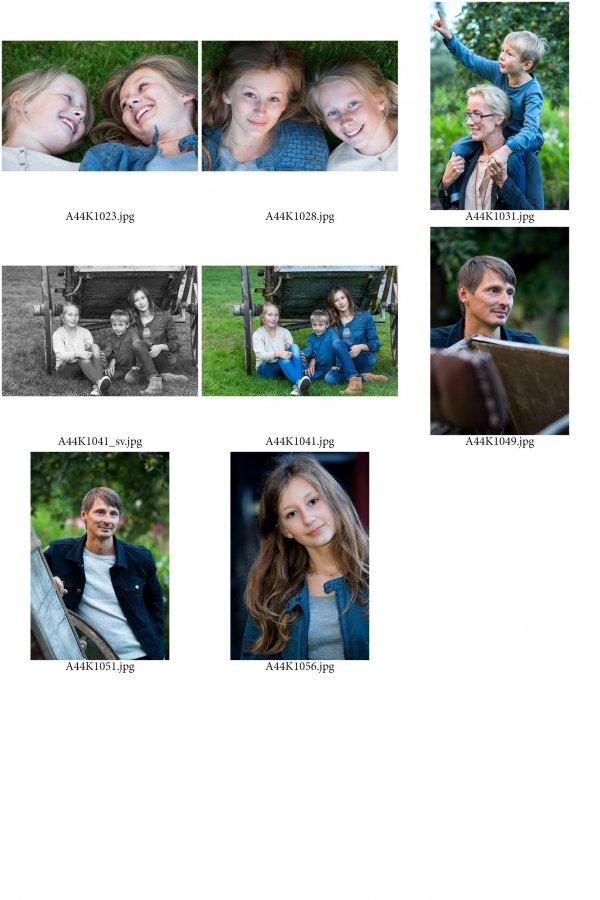 /familjen-hedlund-ark-6.jpg