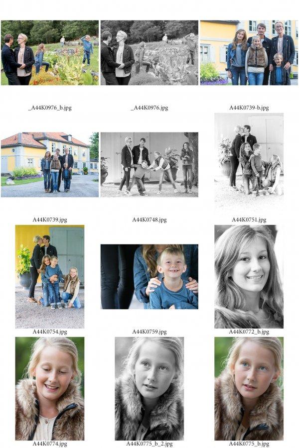 /familjen-hedlund-ark-1.jpg