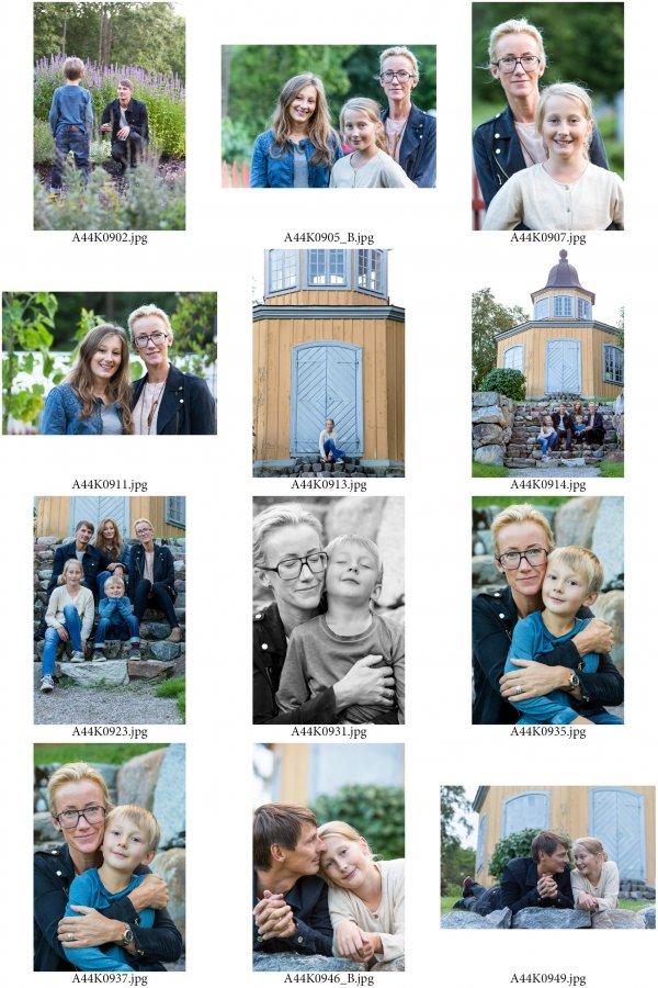 /familjen-hedlund-ark-4.jpg