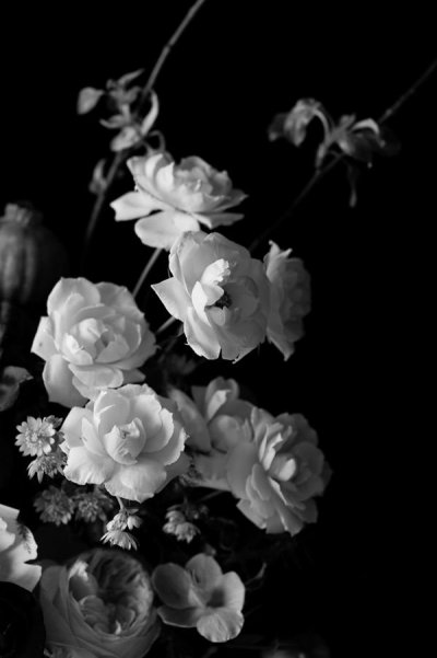 /black-and-white-floral-by-emilia-jane-schobeiri-on-artfully-walls.jpg