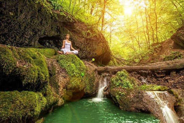 mediterar i skogen