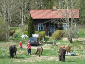 Bo på Hästgård. Boende Med Häst. Ridsemester.