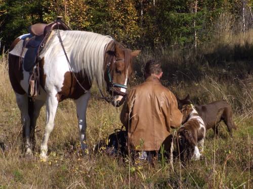 Ridsemester. Ridläger. Boende Med Häsbuttont. Semester med hästar. Ridresa. Ridresor.