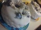 anemone_cake.jpg