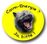 Cairn-Energie? - Ja, bitte!