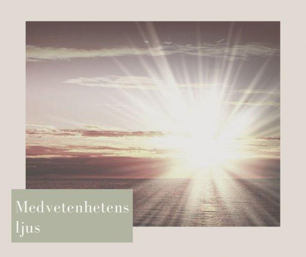 Medvetenhetens ljus och de fyra medvetandenivåerna.