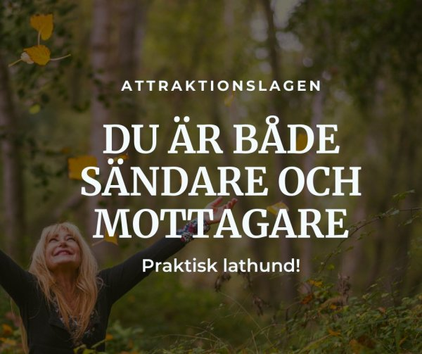 Guide Attraktionslagen.
