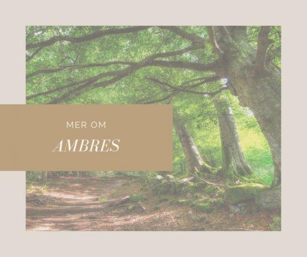 Veta mer om Ambres