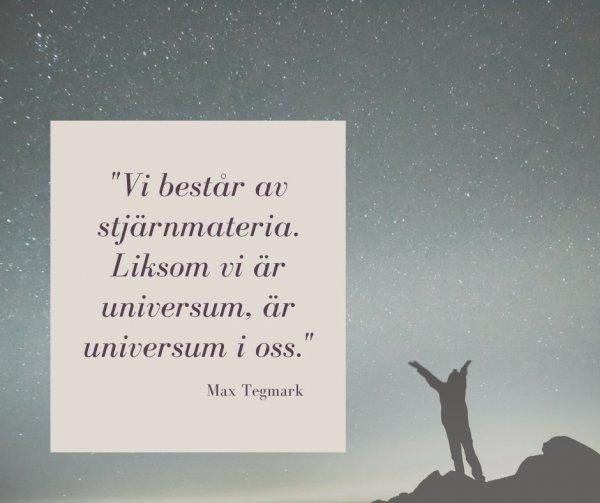 Mediet Ambres och forskaren Max Tegmarks syn på livet.