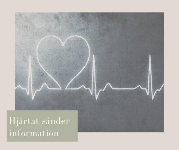 HeartMath forskar om hjärta och känslor.