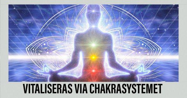 Chakrasystemet enligt Ambres.