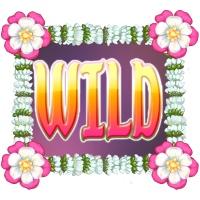 Bollywood Story Wild