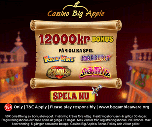 Casino Big Apple erbjudande
