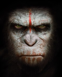 Planet of the Apes Netentertainment