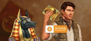 Wildblaster bitcoins