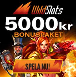 /wildslots-bonuspaket.png