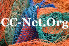 CC-Net Logo