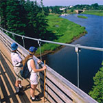 View from Tidnish Suspension Bridge