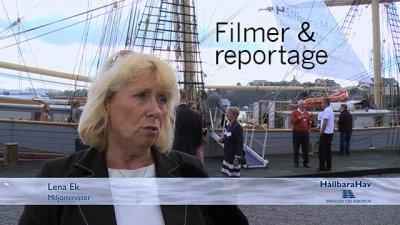 Filmer & reportage