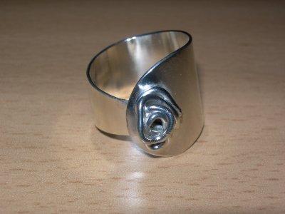 /ring-020.jpg
