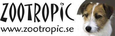/zootropic.jpg