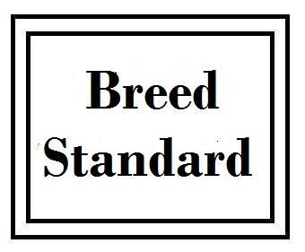 /breed-standard.jpg