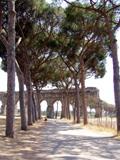 Parks, Villa Borghese, Doria Pamphili, Porta Portese, Wissenswertes