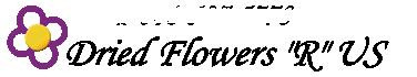 Dried Flowers R Us