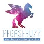 Photo du profil de PegaseBuzz