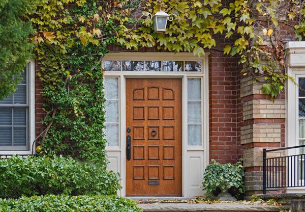 klätterväxter på fasaden