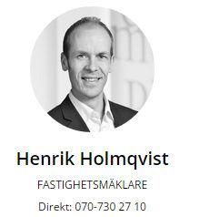Henrik Holmqvist