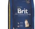 Brit premium Adult chicken 8 kg