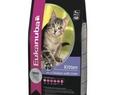 Eukanuba Kitten 10 kg