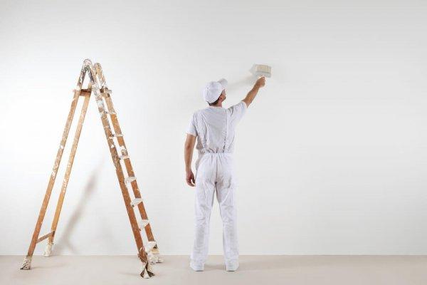 Man står bredvid stege och målar en vägg vit med en roller