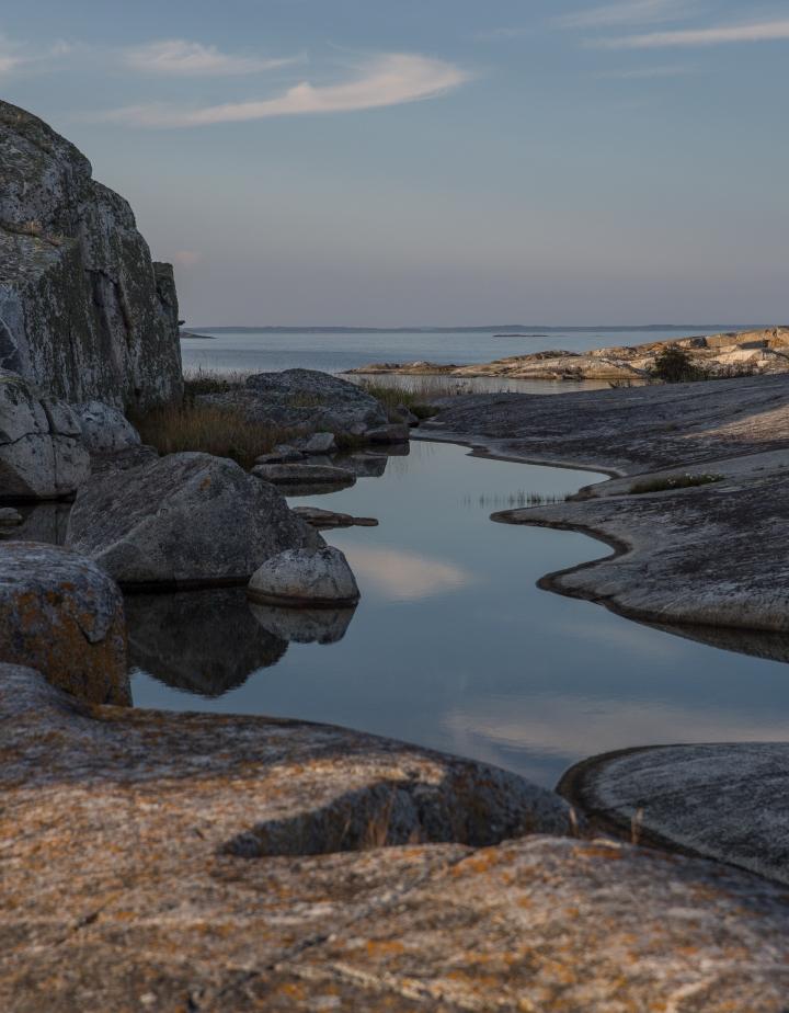 Liz Hansson, naturfotograf | FSF Fotografer och fotokonst