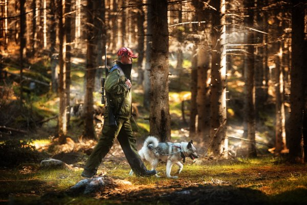 jagare-med-hund