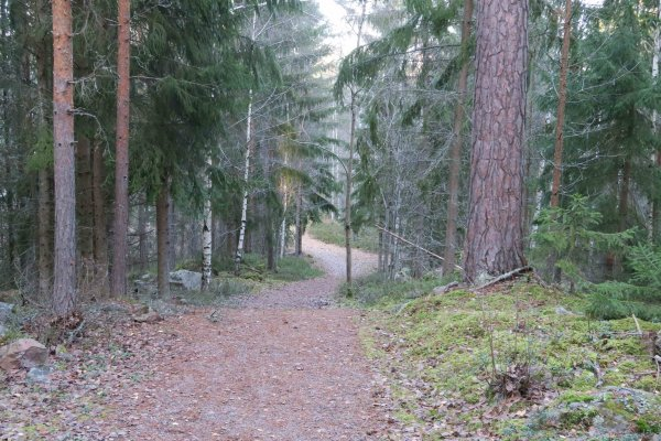 /naturstigen-uvberget-11.jpg