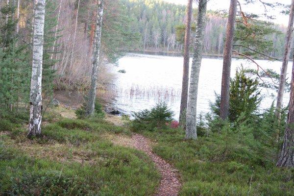 /naturstigen-uvberget-34c.jpg