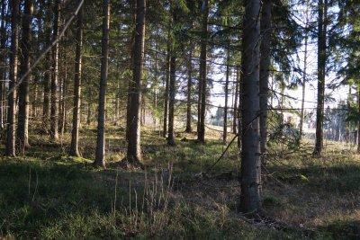 /naturstigen-uvberget-4b.jpg